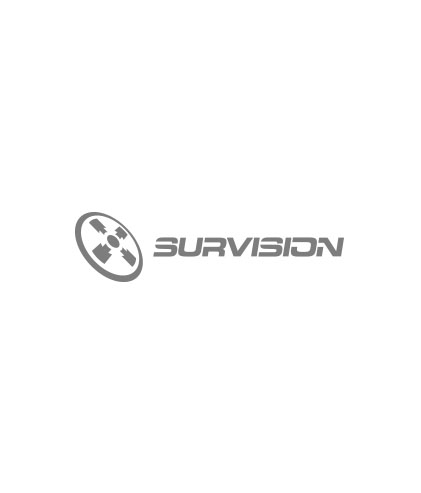 024-survision.jpg
